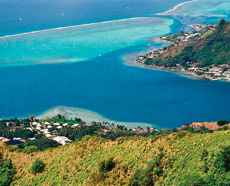 coral reefs of Moorea as seen from height