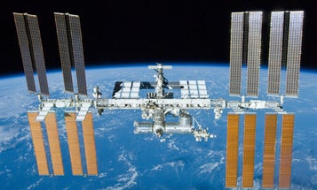 Fungi Survive Mars-Like Conditions On The Space Station