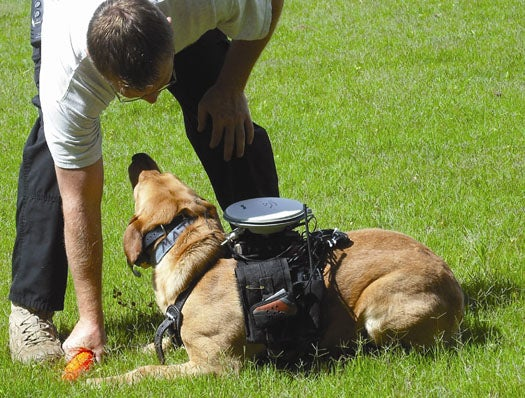 New Remote System Lets Handlers Guide Their Dogs From Afar