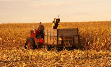 Iowa Scientists Say Climate Change Threatens State Agriculture