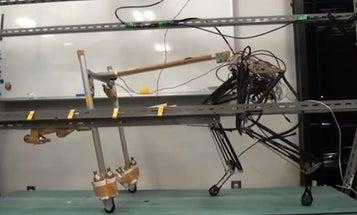 Pneumatic Muscles Power Sinewy New Leopard Robot