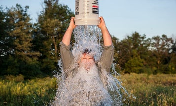 Ice Bucket Challenge Funds New ALS Gene Discovery
