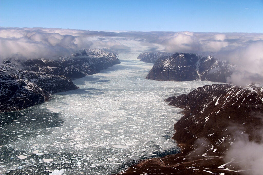 Fjord in southern Greenland