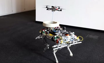 Watch A Drone Land On A Robot Dog