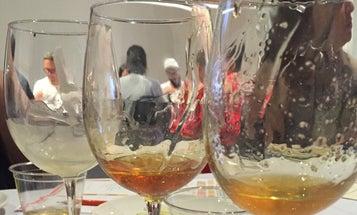 Wine Tasting Not For You? Try Honey Tasting