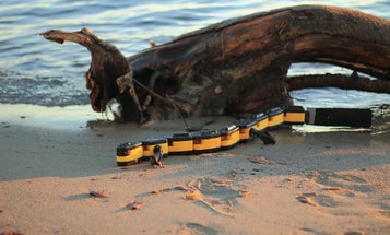 Meet The Robotic Salamander That'll Walk, Swim, And Crawl Into Your Nightmares