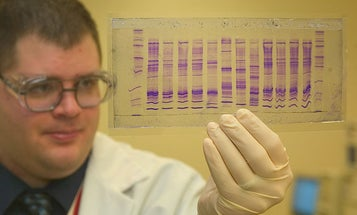 Custom DNA Makers May Be Required to Screen Customers, Hoping to Thwart Crafty Bioterrorists