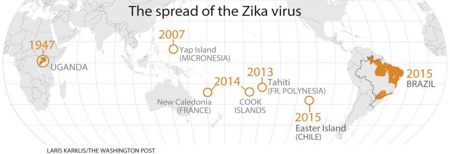Zika Virus: The Making of an Epidemic