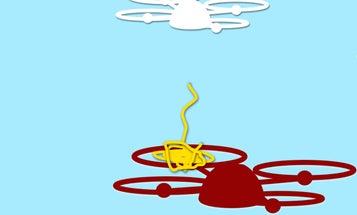 Rapere Is An Anti-Drone Interceptor