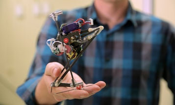 This little robot can jump three feet in the air
