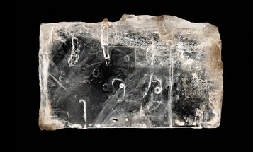 Scientists Revive Ancient Bacteria Trapped In Crystals