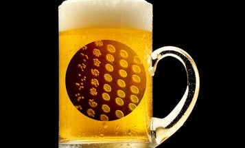 In Study, Beer Drinkers Found To Be Less Alzheimer's-Prone
