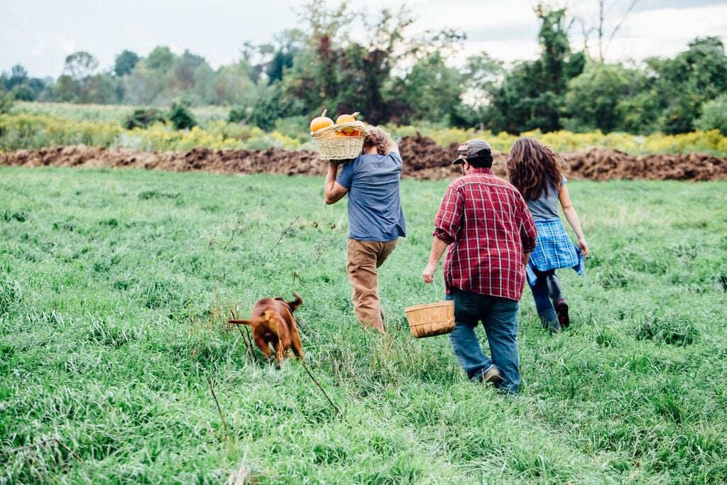 Young farmers millennial