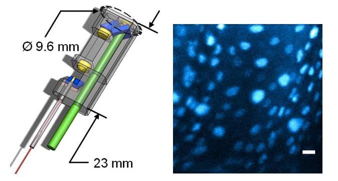 Super-Precise Laser Scalpel Minimizes Collateral Damage