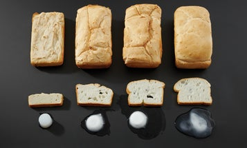Gray Matter: Smart Chemistry Builds Gluten-Free Bread With Some Bite