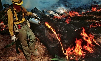 Firefighters' Flame-Throwing Toolkits Keep Wildfires in Check