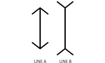 Are These Lines The Same Height? Your Answer Depends On Where You're From