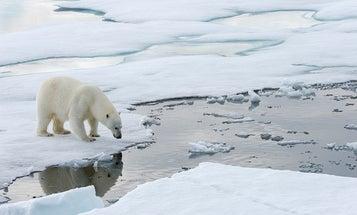 A claim-by-claim analysis of a climate denial 'news' story