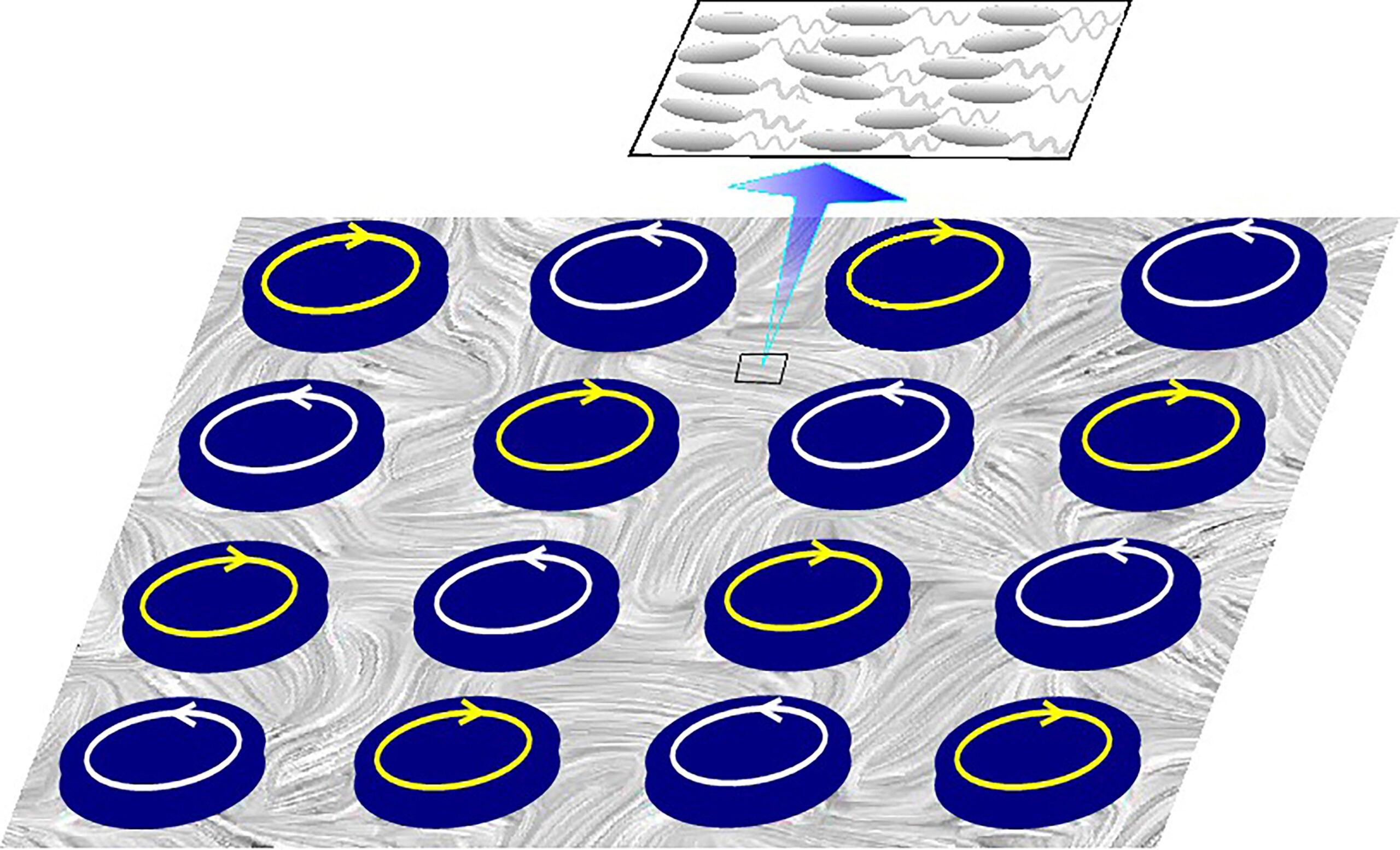 Bacteria Turbulence