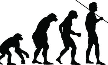 You're Not Highly Evolved