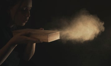 Chemicals lurking in household dust may prime cells to store fat