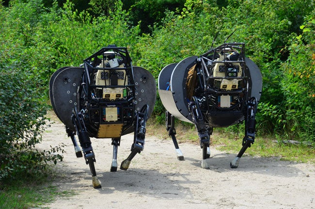 A Pair Of Robots On A Stroll