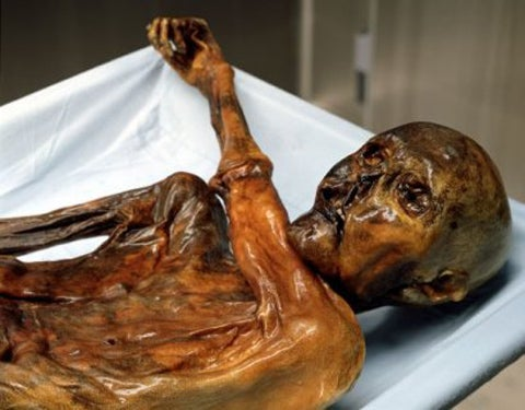 Looking Inside a Mummy's Stomach