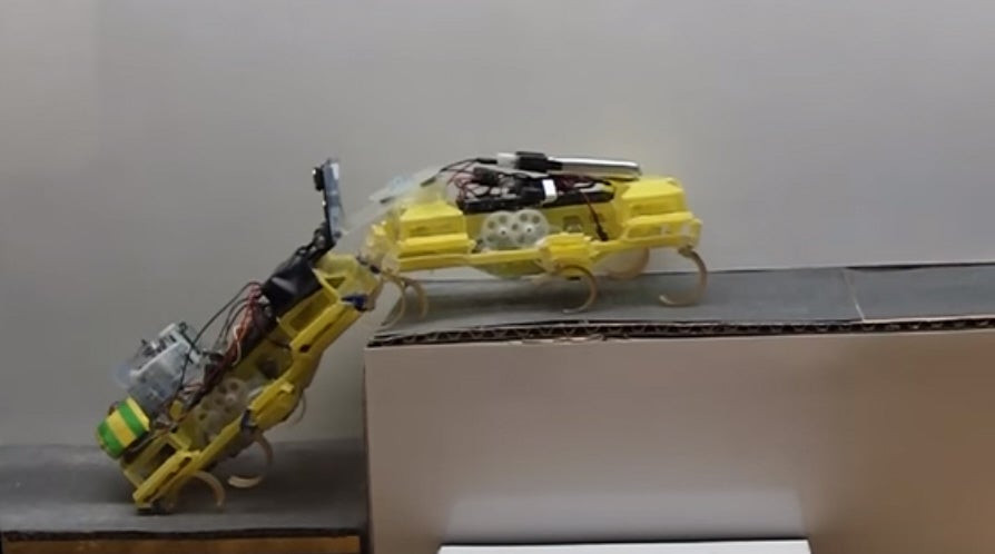 Robot Roaches Work Together To Climb A Step