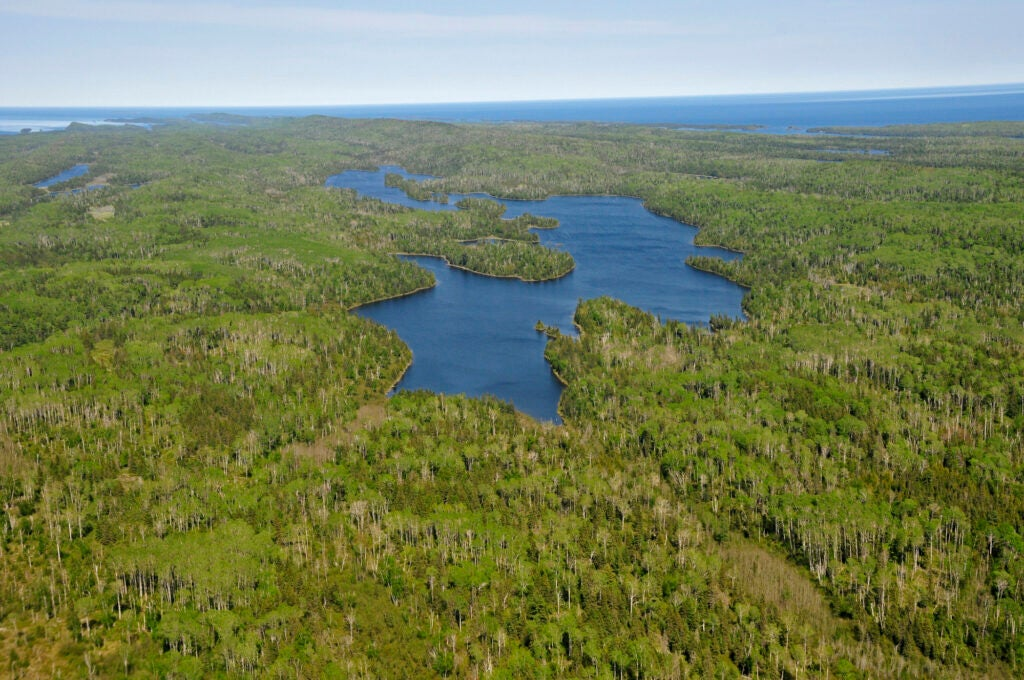Aerial view of Sargent Lake surrounded by the forest of Isle Royale. Lake Superior in the distance.