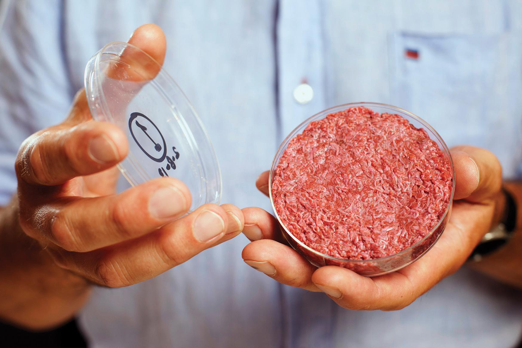 What Does It Take To Make Meat From Stem Cells?