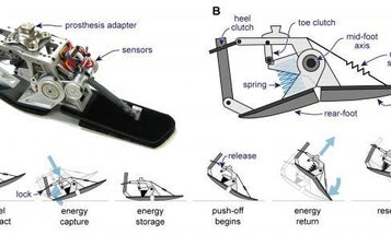 Power-Harvesting Prosthetic Uses Every Footstep to Power the Next