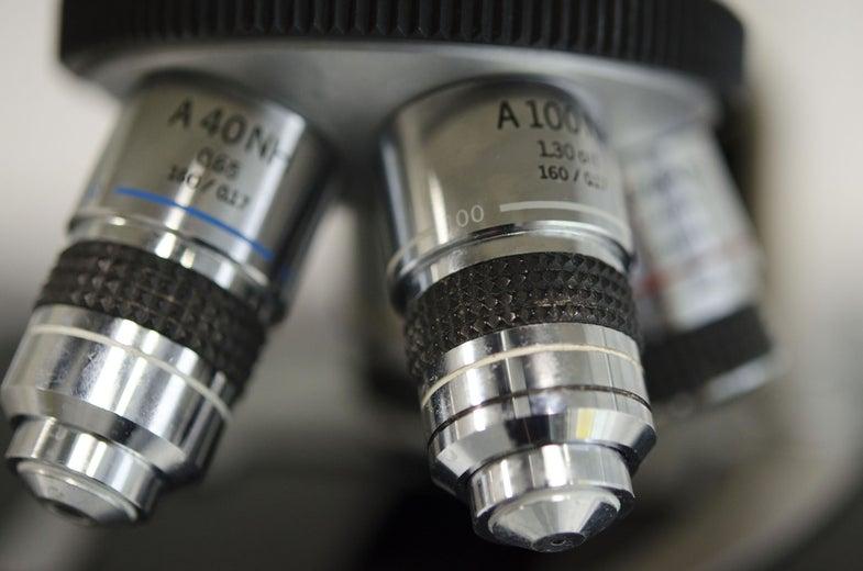 Inventors Of Ultra-High-Res Microscopes Snag Nobel Prize In Chemistry