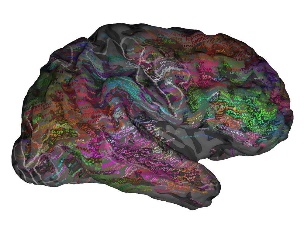 """brain"