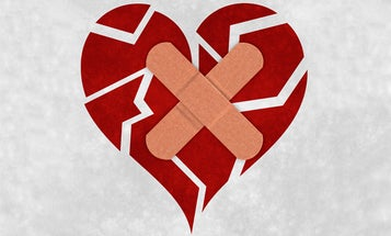 Could Drugs Heal A Broken Heart?