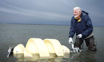 Invention Awards: A Fish-Friendly Tidal Turbine