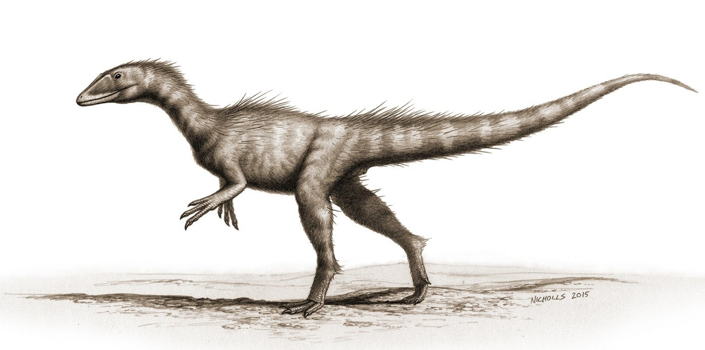 Tiny, Ancient T. Rex Relative Found In Wales