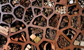 London Builds an Insect Hotel to Keep Helpful Bugs in Residence