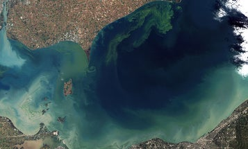 The world's water quality might be in trouble