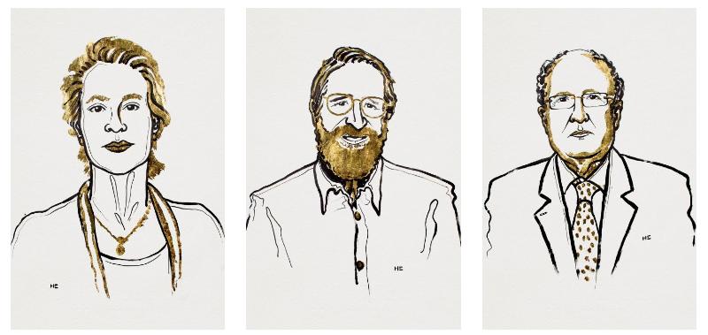 This year's Nobel Prize in chemistry 'rewards a revolution based on evolution'