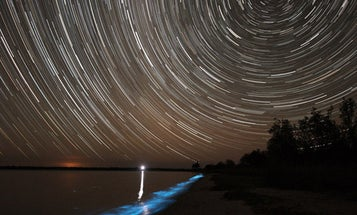 A Long Exposure Captures Bioluminescence Below, a Swirling, Starry Night Above