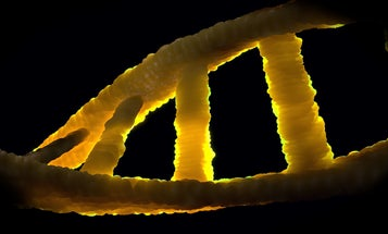 Getting your genetic disease risks from 23andme is probably a terrible idea