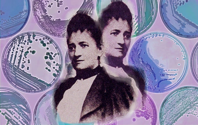 The Forgotten Woman Who Made Microbiology Possible