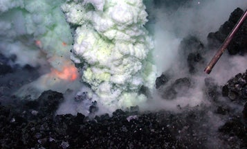 Did Our Oldest Common Ancestor Live In Volcanic Hot Springs?