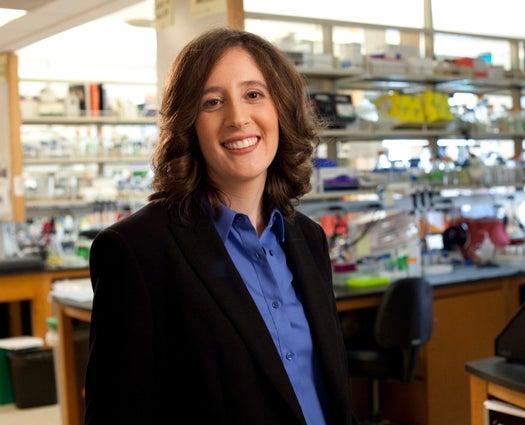 "Meet The 2012 MacArthur Foundation ""Genius"" Scientists"