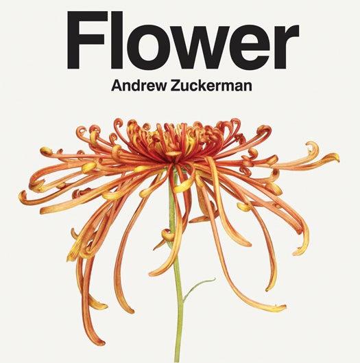 Andrew Zuckerman's Flower