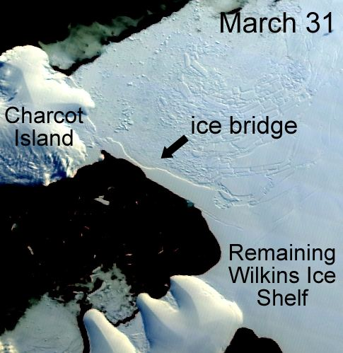Giant Antarctic Ice Bridge Collapses