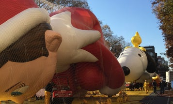 Watch Macy's Thanksgiving Day Parade Balloons Inflated In 360-Degree Video