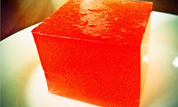 Next-Generation Gelatin Could be Derived from Humans Instead of Animals