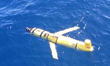 MIT Tests Thinking SeaBots