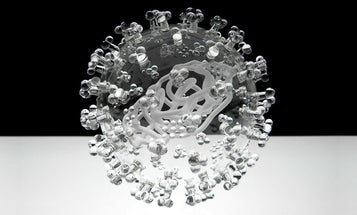 Glass Viruses And Other Amazing Images From This Week